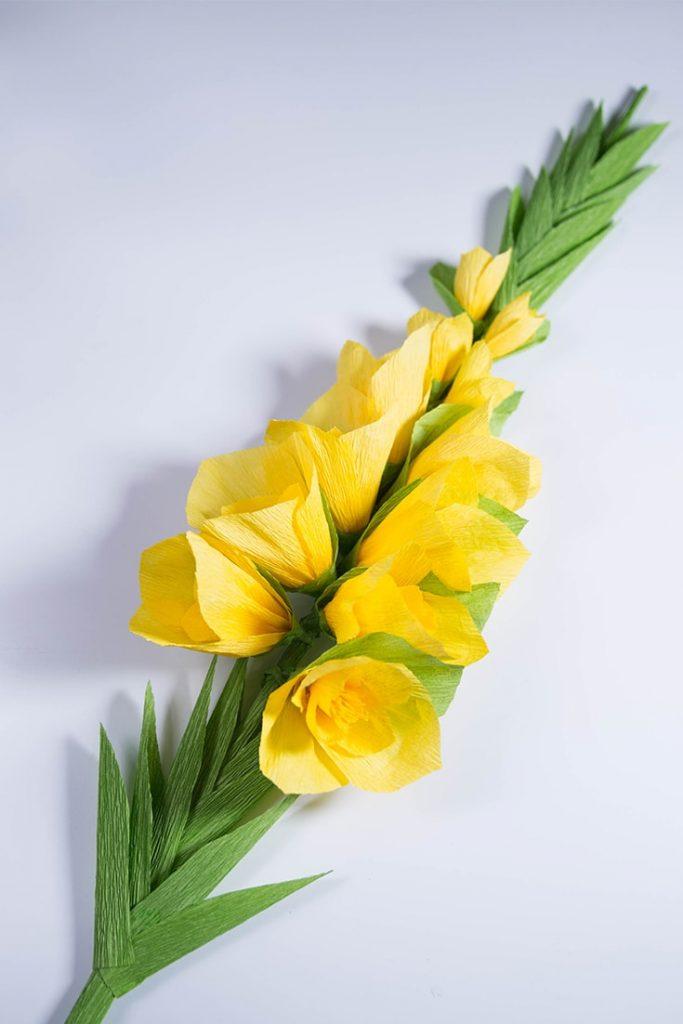 gladiolus paper flowers