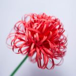 How to make fluffy paper flowers