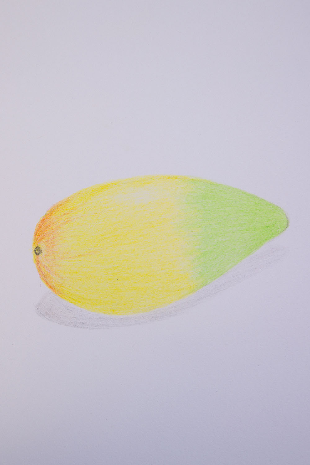How to draw a mango