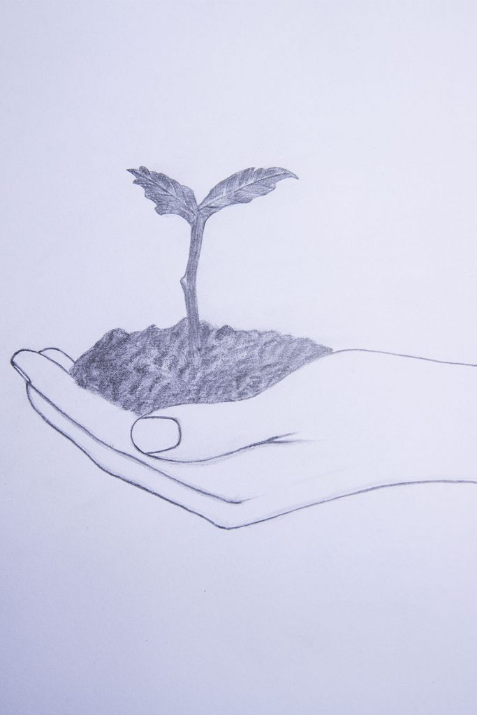 how to draw a hand holding a plant