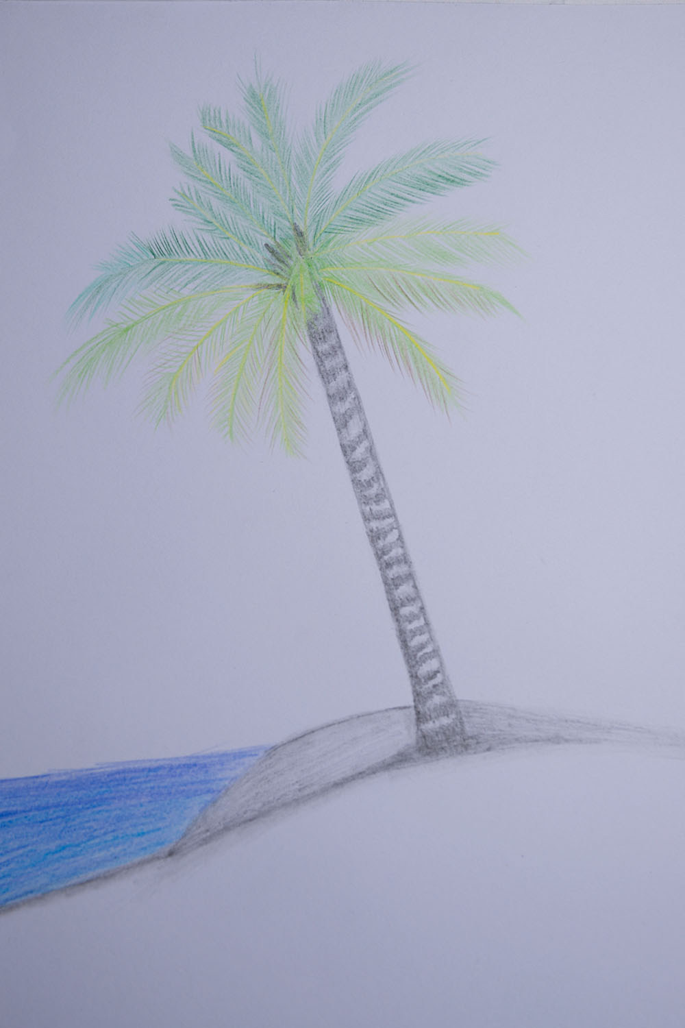 how to draw palm trees easy