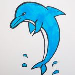 How to draw and color dolphins