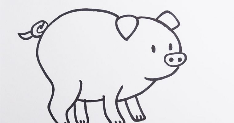 Draw a pig for kids