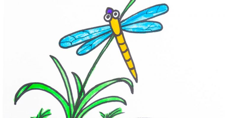 How to draw dragonfly